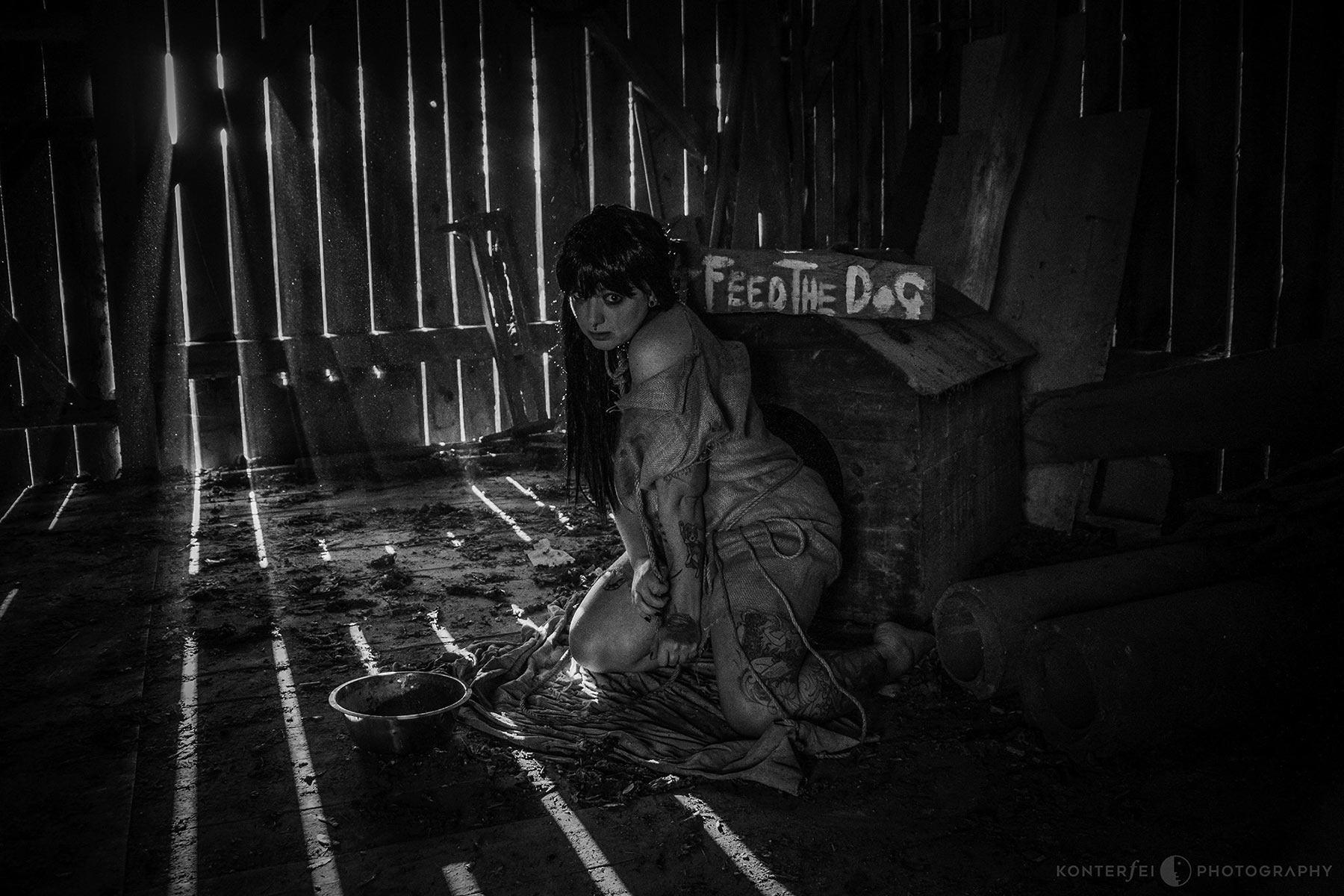Don't feed the Dog | Dark Art | Photography