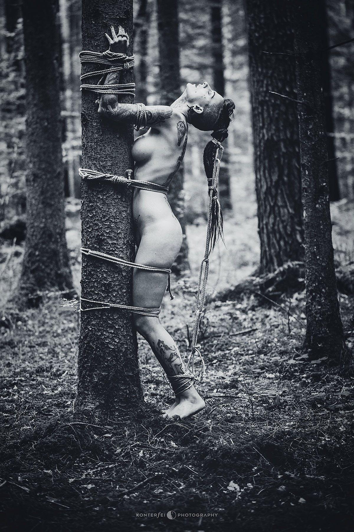 Treelover | Bondage | Photography